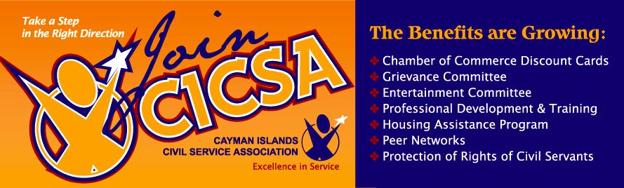 CICSA-3x10-Banner
