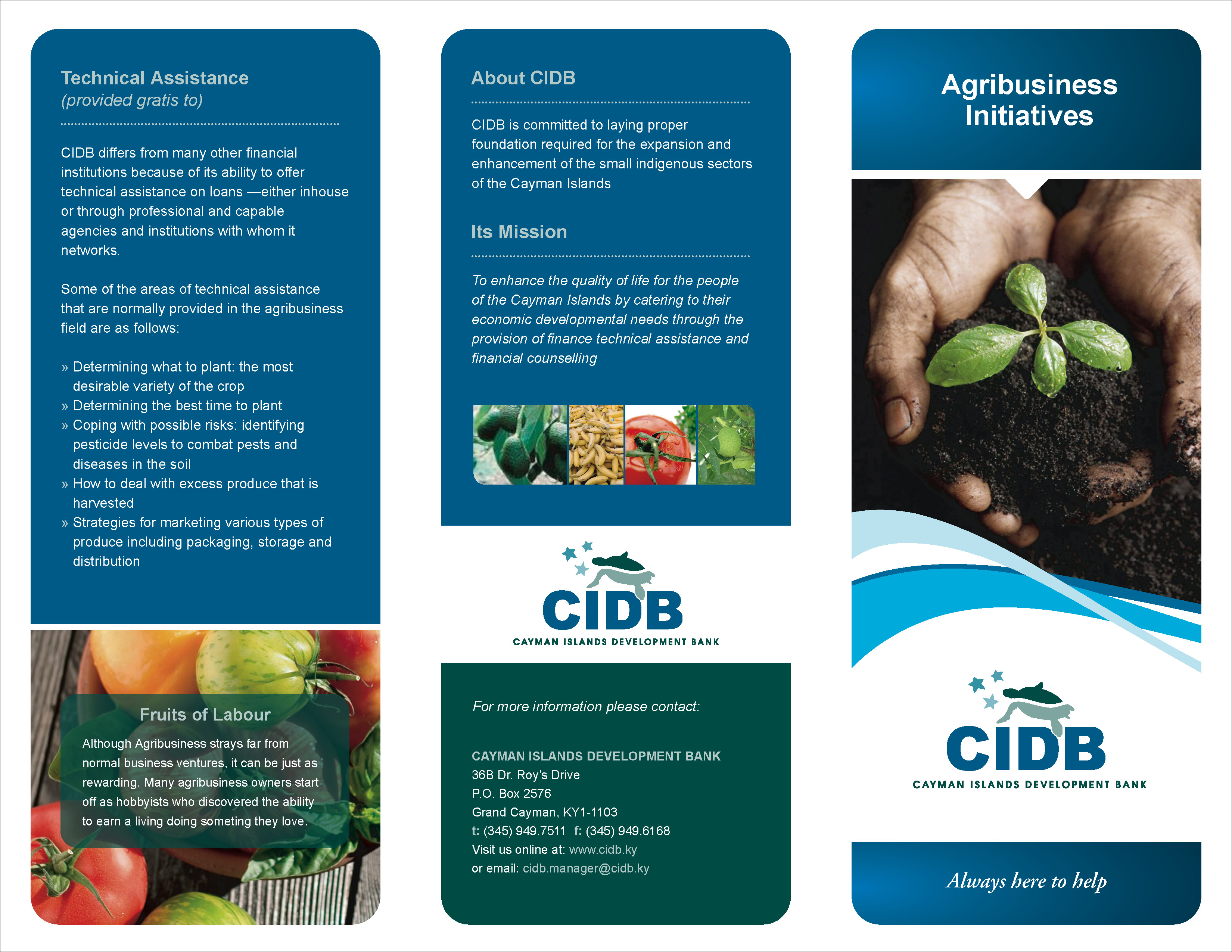 CIDB_Trifold2011_Agribusiness_Aug2011_Page_1